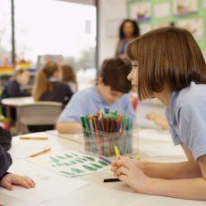 Sociedade Paranaense de Pediatria reativa o Departamento de Saúde Escolar